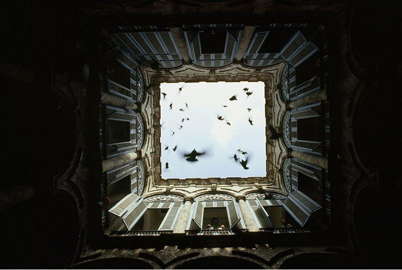Стая птиц взлетает в закрытом внутреннем дворе в Старой Гаване, декабрь 1987 Фото: Джеймс Л. Стэнфилд