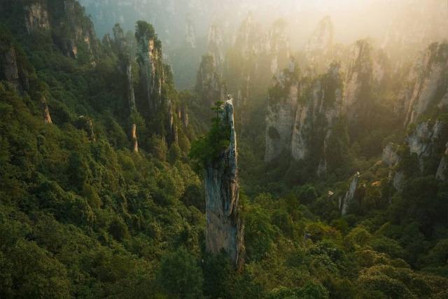Заповедник Улинъюань китайской провинции Хунань. Необычные столбы из кварцевого песчаника, которые появились в результате тысячелетней эрозии.