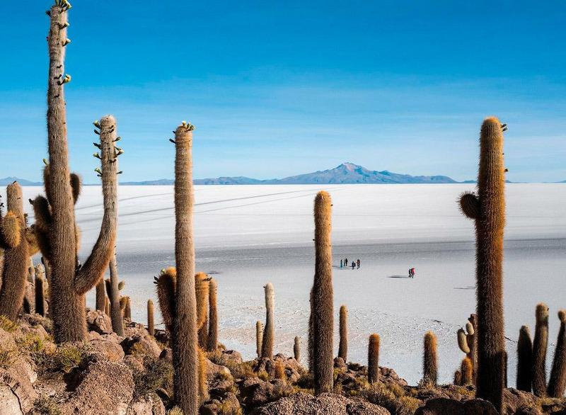 Солончак Салар де Уюни в Боливии.