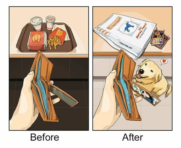 Жизнь до и после появления собаки