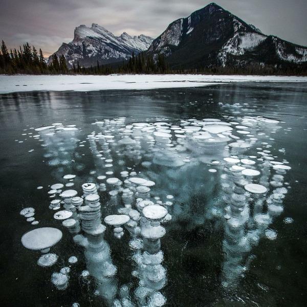Замёрзшие пузырьки метана