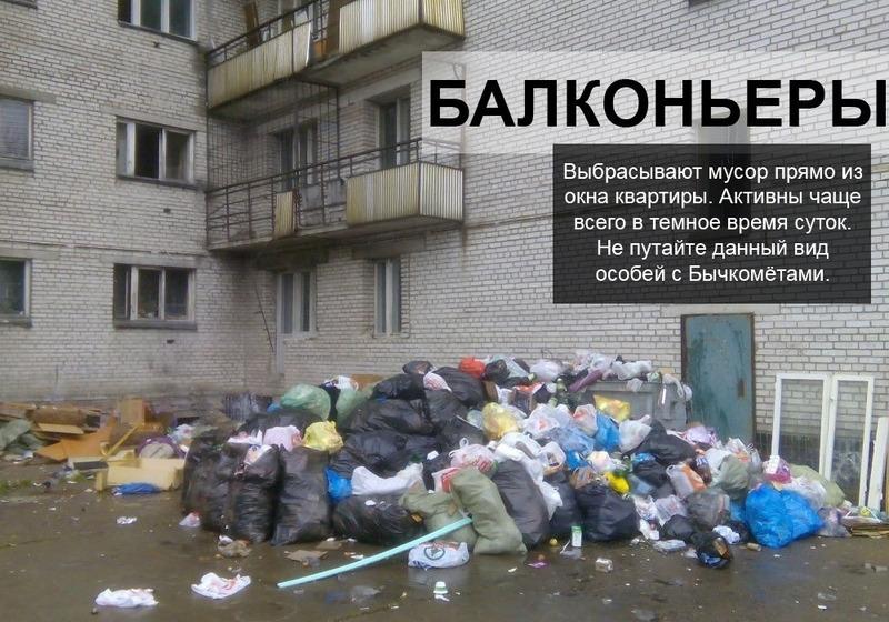 Типы мусорящих людей