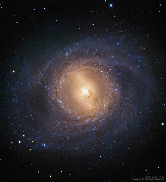 Спиральная галактика с перемычкой M95