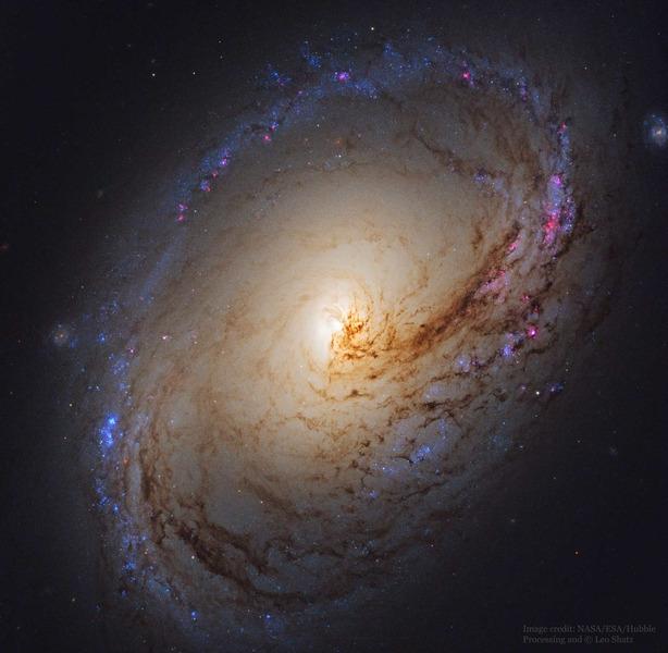 Спиральная галактика M96 (NGC 3368)