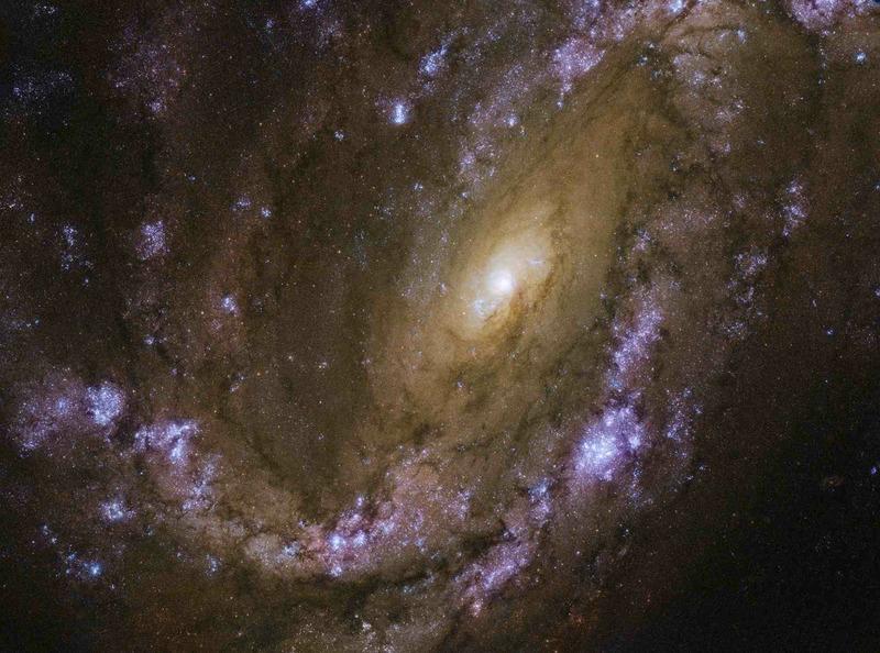 Спиральная галактика NGC 4051