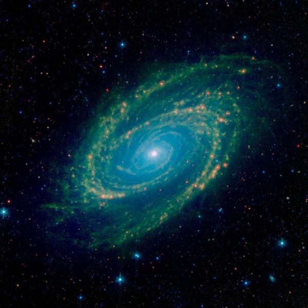 Галактика Боде (M81, NGC 3031)