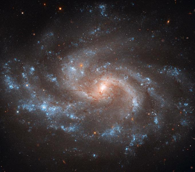 Спиральная галактика NGC 5548