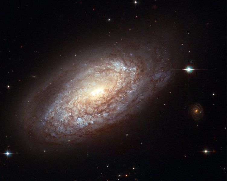 Спиральная галактика NGC 2397