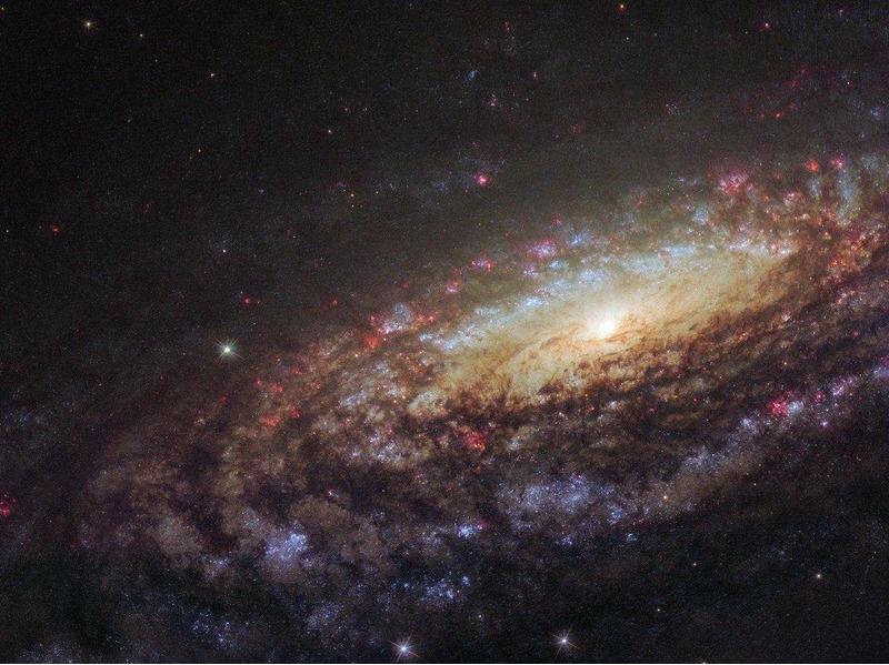 NGC 7331 — спиральная галактика в созвездии Пегаса