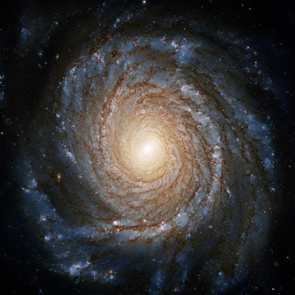 Спиральная галактика NGC 3147 в созвездии Дракон