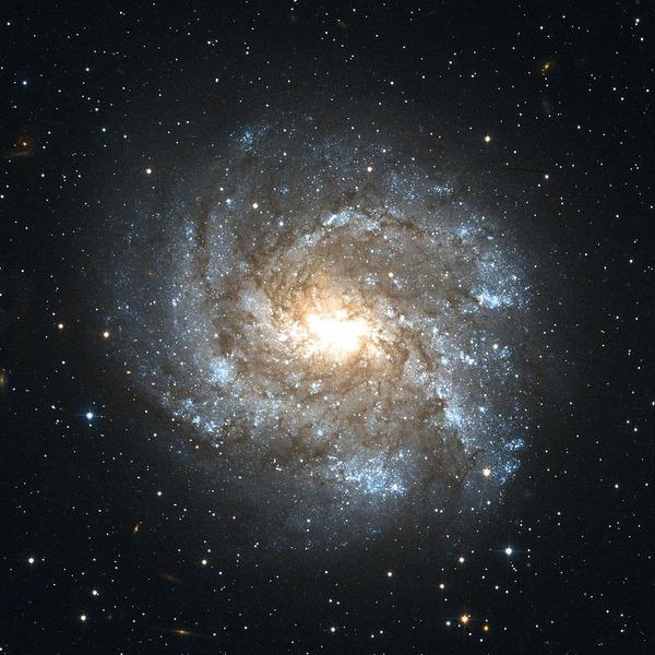 Галактика NGC 2082