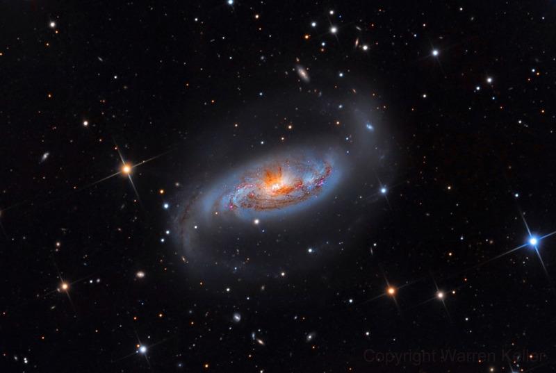Спиральная галактика с перемычкой NGC 1808