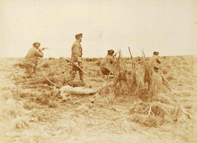 Охотники на индейцев, 1880–е годы, Огненная Земля