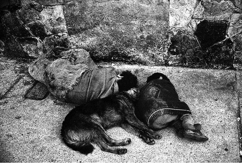 Спящие на улице мужчина, мальчик и собака. Колумбия, 1979 год.
