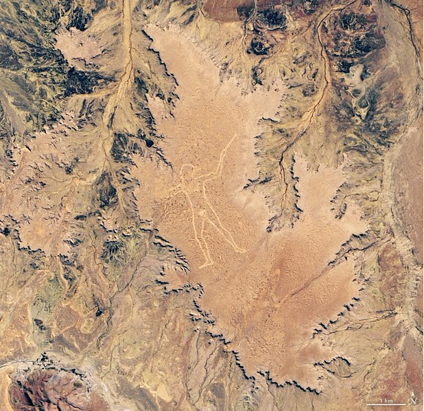Гигантский человек на плато Финнис Спрингс в Южной Австралии.