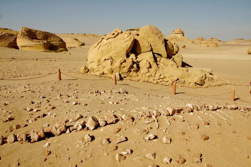 Долина китов (Вади-аль-Хитан)