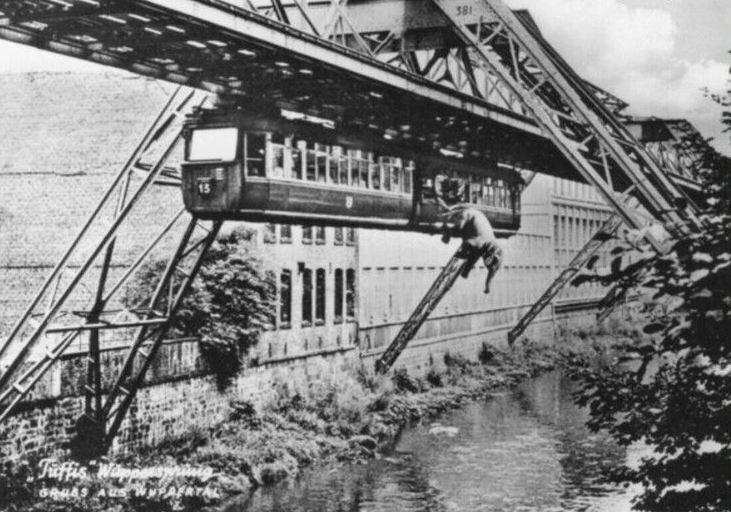 Побег слона из вагона монорельсовой дороги. Германия. 1950 год. Слон прожил потом еще 40 лет.