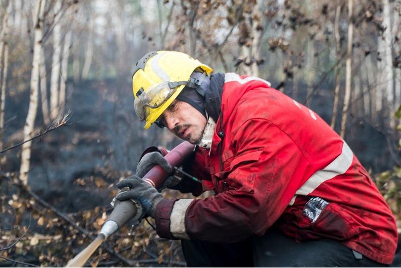 Дима Билан тушит пожары в Рязанской области